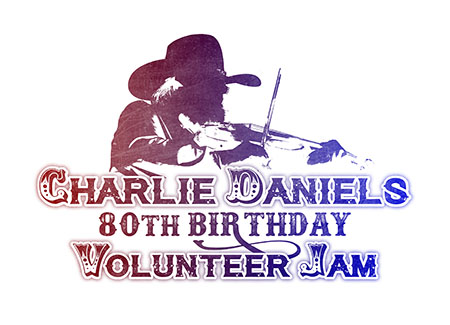Volunteer Jam XVII 2015 - logo 18 - pieces